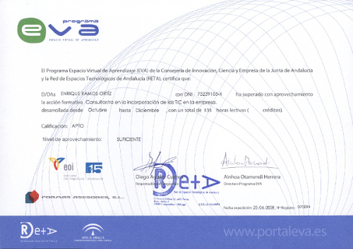 Consultor TIC Novapyme